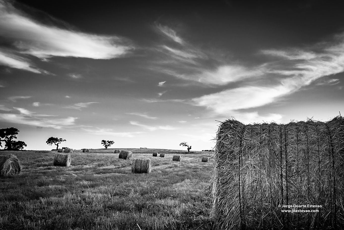 black white Round bale field sunset Castro Verde Alentejo Portugal