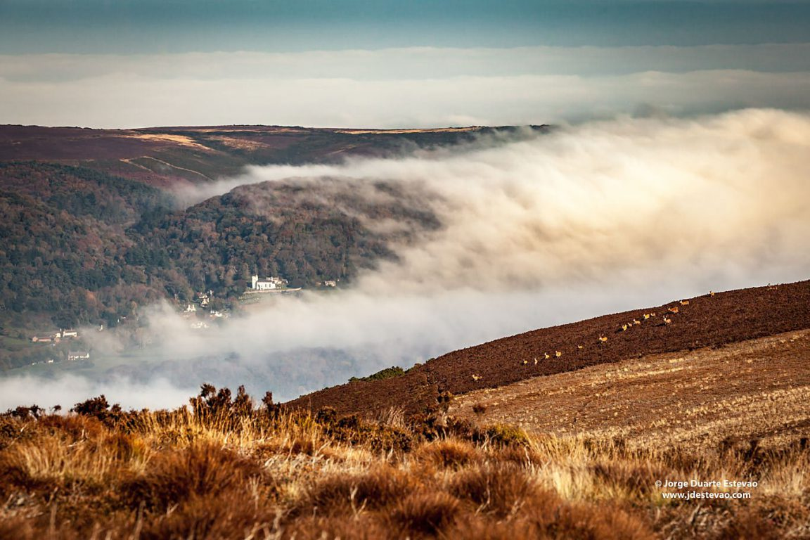 The clouds engulf the valley in Exmoor National Park south west England, United Kingdom. Named after the River Exe, it features open moorland and abundant wildlife