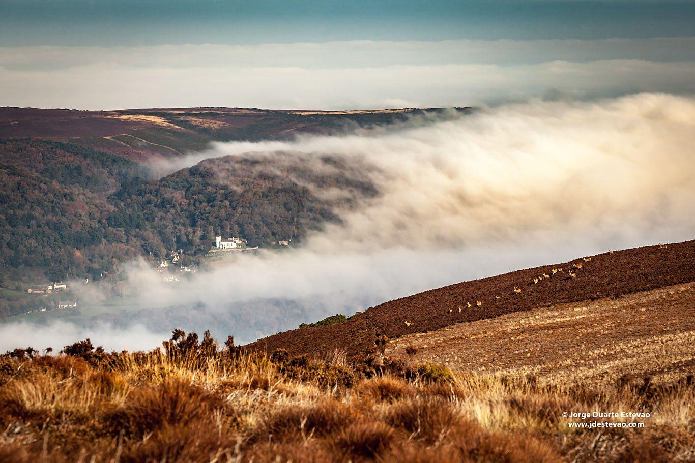 Exmoor National Park clouds fog Somerset north Devon deer crossing